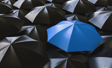 Red umbrella between black ones, standing out of the crowd concept image- Stock Photo or Stock Video of rcfotostock | RC-Photo-Stock