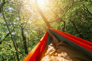 relaxing in the hammock in the summer garden- Stock Photo or Stock Video of rcfotostock | RC-Photo-Stock