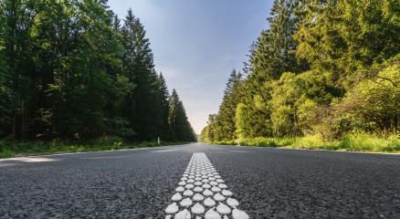 road in forest- Stock Photo or Stock Video of rcfotostock | RC-Photo-Stock