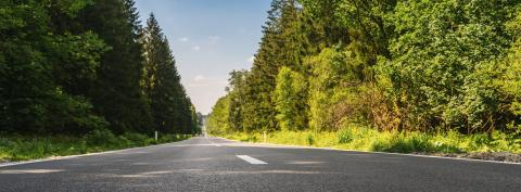road in forest banner size- Stock Photo or Stock Video of rcfotostock | RC-Photo-Stock