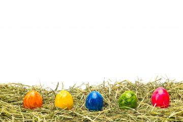 row of colorful easter egg on hay- Stock Photo or Stock Video of rcfotostock | RC-Photo-Stock