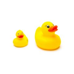 rubber duck family : Stock Photo or Stock Video Download rcfotostock photos, images and assets rcfotostock | RC-Photo-Stock.:
