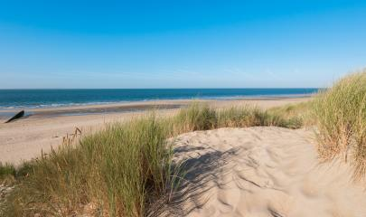 sand dunes with grass in Zeeland, Holland- Stock Photo or Stock Video of rcfotostock | RC-Photo-Stock