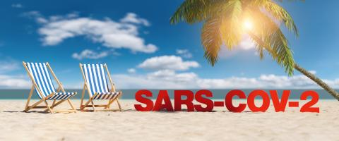 Sars-cov-2 Covid-19 Coronavirus epidemic concept with slogan on the beach with deckchairs, Palm tree and blue sky- Stock Photo or Stock Video of rcfotostock | RC-Photo-Stock