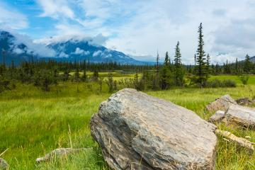 Saskatchewan Valley in jasper canada  : Stock Photo or Stock Video Download rcfotostock photos, images and assets rcfotostock | RC-Photo-Stock.: