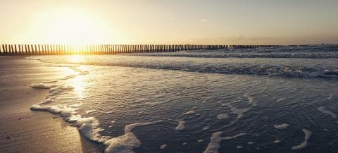Seaside with sand and waves at sunset- Stock Photo or Stock Video of rcfotostock | RC-Photo-Stock