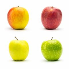 set of different apple varieties : Stock Photo or Stock Video Download rcfotostock photos, images and assets rcfotostock | RC-Photo-Stock.: