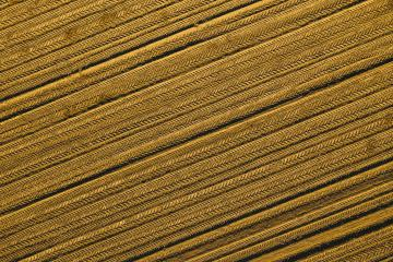 shapes of agricultural plowed field prepared for planting. Aerial view shoot from drone directly above field- Stock Photo or Stock Video of rcfotostock | RC-Photo-Stock