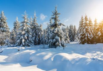snowy winter landscape- Stock Photo or Stock Video of rcfotostock   RC-Photo-Stock