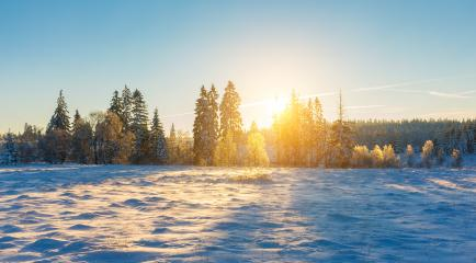 snowy winter landscape at sunrise in belgium at the hautes fagnes : Stock Photo or Stock Video Download rcfotostock photos, images and assets rcfotostock | RC-Photo-Stock.: