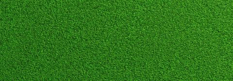 Soccer green grass as a panoramic banner background, banner size, EM 2020 Concept image : Stock Photo or Stock Video Download rcfotostock photos, images and assets rcfotostock   RC-Photo-Stock.: