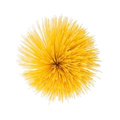 Spaghetti twister isolated on white background- Stock Photo or Stock Video of rcfotostock | RC-Photo-Stock