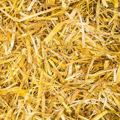 straw texture background- Stock Photo or Stock Video of rcfotostock | RC-Photo-Stock