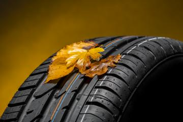 summer tires with autumn leaves : Stock Photo or Stock Video Download rcfotostock photos, images and assets rcfotostock | RC-Photo-Stock.: