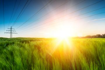 Sun emits explosive over wheat field- Stock Photo or Stock Video of rcfotostock | RC-Photo-Stock