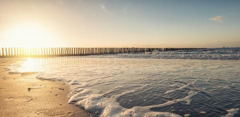 Sunset at the beach : Stock Photo or Stock Video Download rcfotostock photos, images and assets rcfotostock | RC-Photo-Stock.: