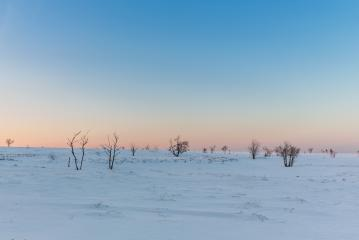 Sunset at the hautes Fagnes at winter : Stock Photo or Stock Video Download rcfotostock photos, images and assets rcfotostock | RC-Photo-Stock.: