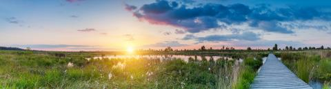 sunset at the Hautes Fagnes (Hohes venn) panorama : Stock Photo or Stock Video Download rcfotostock photos, images and assets rcfotostock | RC-Photo-Stock.: