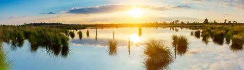 sunset over a bog lake at the Hautes Fagnes : Stock Photo or Stock Video Download rcfotostock photos, images and assets rcfotostock | RC-Photo-Stock.: