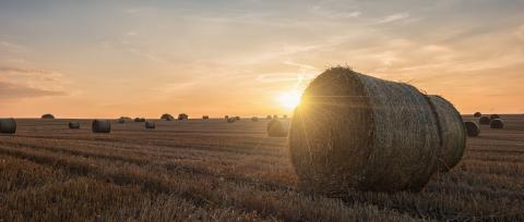 Sunset over farm field with hay bales - Stock Photo or Stock Video of rcfotostock | RC-Photo-Stock
