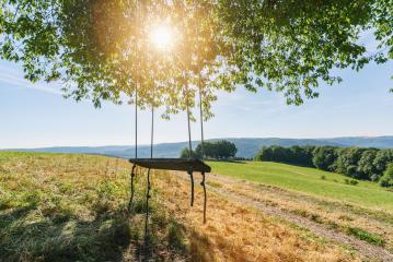 Swing in the Beautiful Nature scene at summer- Stock Photo or Stock Video of rcfotostock | RC-Photo-Stock