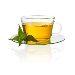 Tea cup glass with nettle leaf hot drink medicinal plant isolated on white background with reflection- Stock Photo or Stock Video of rcfotostock | RC-Photo-Stock