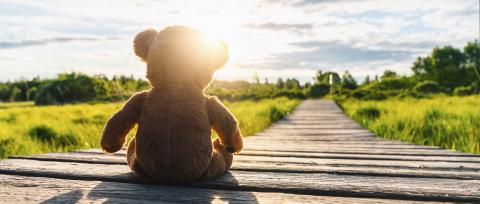 Teddy bear sitting on a Path into the sun... copyspace for your individual text. : Stock Photo or Stock Video Download rcfotostock photos, images and assets rcfotostock | RC-Photo-Stock.: