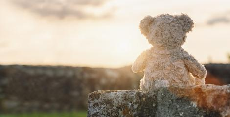 Teddy bear sitting on a stone wall at sunset. copyspace for your individual text. : Stock Photo or Stock Video Download rcfotostock photos, images and assets rcfotostock | RC-Photo-Stock.: