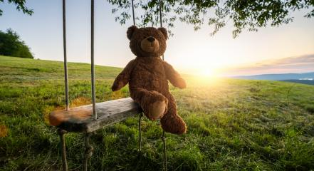 teddy bear sitting on a Swing on sunset. Love theme. Concept about love and childhood : Stock Photo or Stock Video Download rcfotostock photos, images and assets rcfotostock | RC-Photo-Stock.: