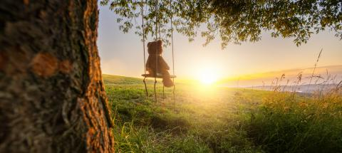Teddy bear sitting on a Swing on sunset on a old oak tree. Concept image about love and childhood- Stock Photo or Stock Video of rcfotostock | RC-Photo-Stock