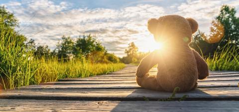 Teddy bear sitting on a Wooden path at sunset. copyspace for your individual text. : Stock Photo or Stock Video Download rcfotostock photos, images and assets rcfotostock | RC-Photo-Stock.: