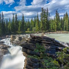 The famous rugged Athabasca Falls. Jasper Park. Mountains, river and waterfall make up magnificent landscape. Picturesque narrow gorge in the Canadian Rockies : Stock Photo or Stock Video Download rcfotostock photos, images and assets rcfotostock | RC-Photo-Stock.: