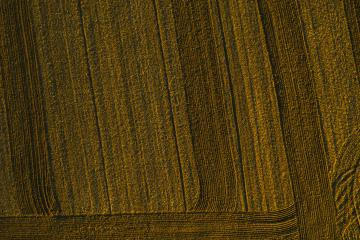 Top Aerial view of furrows row pattern in a plowed field prepared for planting crops in spring. Growing wheat crop in springtime. Aerial view of harvest fields- Stock Photo or Stock Video of rcfotostock | RC-Photo-Stock