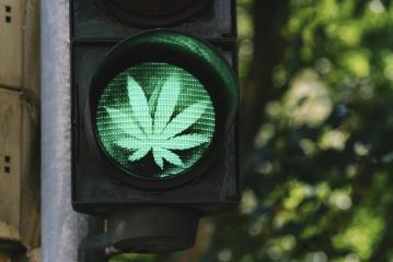 traffic light with cannabis sign - legalize it concept image- Stock Photo or Stock Video of rcfotostock | RC-Photo-Stock