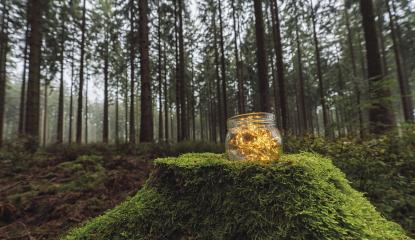 Transparent jar with lights from led in a misty forest. Romantic Hipster Concept. copyspace for your individual text- Stock Photo or Stock Video of rcfotostock | RC-Photo-Stock