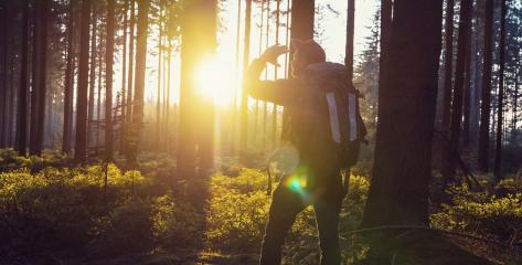 Traveler Man hiking in the woods and looks in to the sunset light - Travel Life Concept image : Stock Photo or Stock Video Download rcfotostock photos, images and assets rcfotostock | RC-Photo-Stock.: