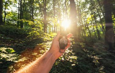 Traveler man holds a compass in the forest with explosive sunlight. Point of view shot - Stock Photo or Stock Video of rcfotostock | RC-Photo-Stock