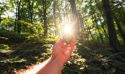 Traveler man searching direction with a compass in the deep woods. Point of view shot with explosive sunlight- Stock Photo or Stock Video of rcfotostock | RC-Photo-Stock