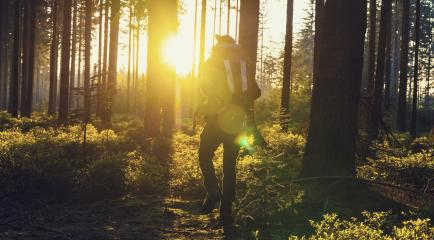 Traveler man walking alonein the woods- Travel Lifestyle emotional concept - Stock Photo or Stock Video of rcfotostock | RC-Photo-Stock