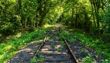 Tunnel of trees hides the old railway track- Stock Photo or Stock Video of rcfotostock | RC-Photo-Stock