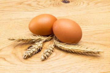 two brown egg with corn ears- Stock Photo or Stock Video of rcfotostock | RC-Photo-Stock