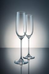 two glasses of champagne- Stock Photo or Stock Video of rcfotostock | RC-Photo-Stock