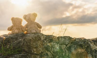 Two teddy bears sitting on a stone and holding hands with sunset light, rear view. Love theme. Concept about love and relationship. copyspace for your individual text. : Stock Photo or Stock Video Download rcfotostock photos, images and assets rcfotostock | RC-Photo-Stock.: