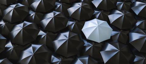 Unique gray umbrella among many dark ones. Standing out from crowd, individuality and difference concept- Stock Photo or Stock Video of rcfotostock | RC-Photo-Stock