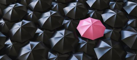 Unique pink umbrella among many dark ones. Standing out from crowd, individuality and difference concept- Stock Photo or Stock Video of rcfotostock | RC-Photo-Stock