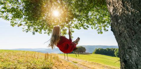 Unrecognizable girl in red dress swaying on a tree swing on peaceful evening. Lady sitting on a wooden swing and looking at golden sunset. Young woman swinging at sunrise- Stock Photo or Stock Video of rcfotostock | RC-Photo-Stock