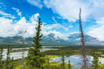 Valley of Saskatchewan River in Canadian Rockies jasper canada : Stock Photo or Stock Video Download rcfotostock photos, images and assets rcfotostock | RC-Photo-Stock.: