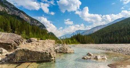 Vermilion river in summer Kootenay National Park canada- Stock Photo or Stock Video of rcfotostock | RC-Photo-Stock