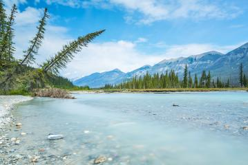 Vermilion river in summer Kootenay National Park canada : Stock Photo or Stock Video Download rcfotostock photos, images and assets rcfotostock | RC-Photo-Stock.: