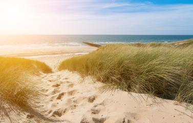 View from dunes to the ocean in Renesse, Domburg, Zeeland, Holland- Stock Photo or Stock Video of rcfotostock | RC-Photo-Stock